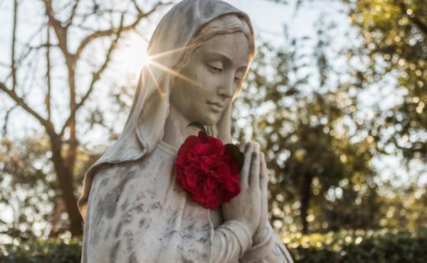 Maria Santíssima, Mãe de Deus e Nossa Mãe