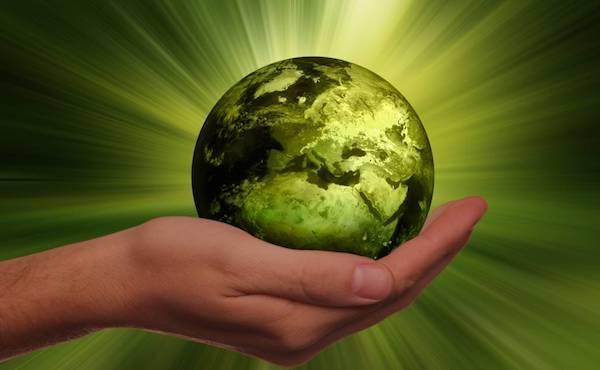 Rugsėjo 1-oji - Pasaulinė maldos už rūpinimąsi kūrinija diena