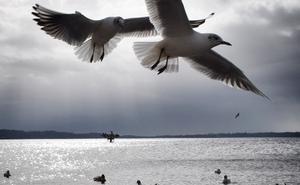 Nuevos Mediterráneos (IV): «No hable: óigale»