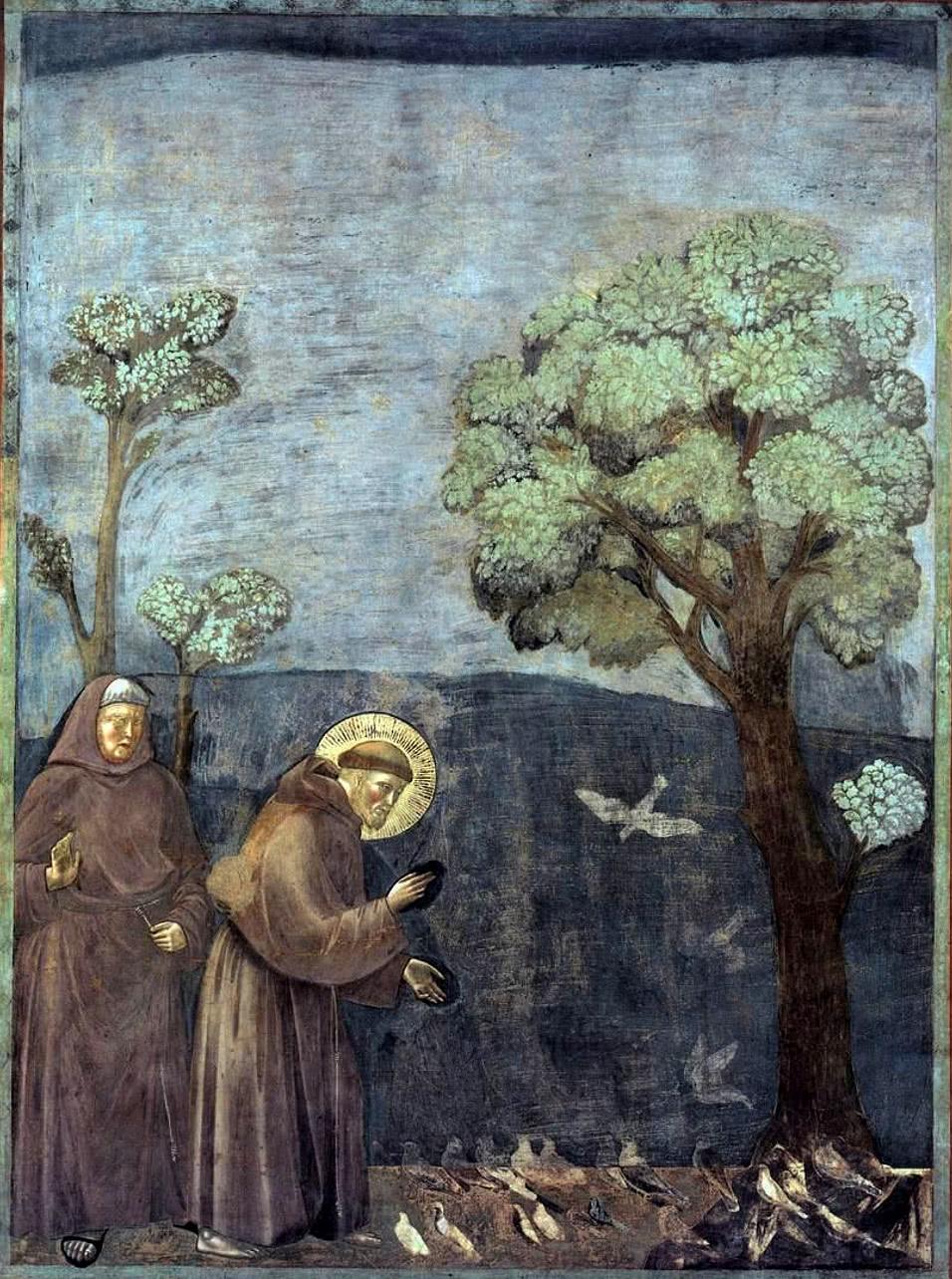 Francisco de Assis pregando aos pássaros. Fresco de Giotto na Basílica dedicada ao santo, em Assis