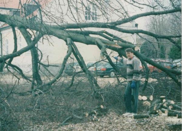 Lipa padła! (1995)
