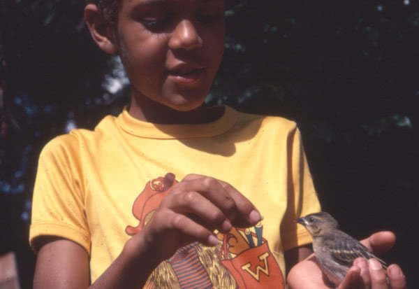 Every day, a bird came to eat in Paul's hands