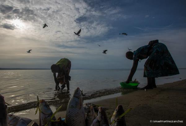 Mujeres recogiendo la pesca al atardecer en el lago Turkana (Kenia).