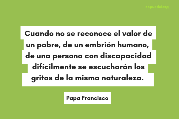 El Papa Francisco En Clave Ecológica 10 Frases Sobre El