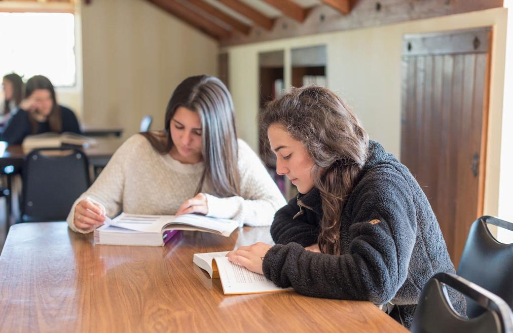 Los espacios para el estudio ocupan un lugar importante en las residencias, al igual que los espacios de encuentro y para quienes quieran, de encuentro con Dios en el oratorio.