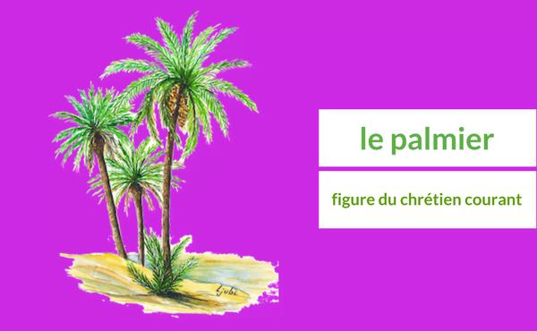 Opus Dei - Le palmier, figure du chrétien courant