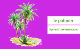 Le palmier, figure du chrétien courant