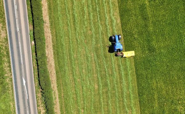 Comentario al Evangelio: Parábola del sembrador