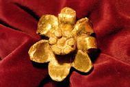 S. Josemaria e a rosa de Rialp