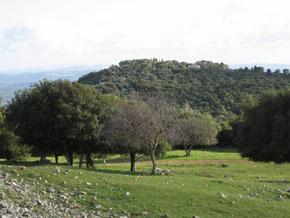 Blick von oben auf El-Muhraqa. Foto: www.biblewalks.com
