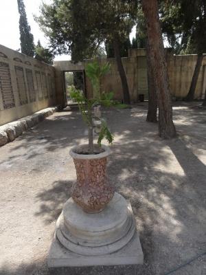 Nel luogo prima occupato dalle navate della basilica bizantina ora c'è un giardino. Foto: Mattes (Wikimedia Commons)