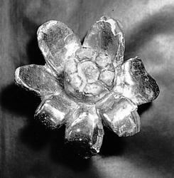 Wooden rose found in the Rialp mountains, fragment of an altarpiece destroyed during the Spanish Civil War