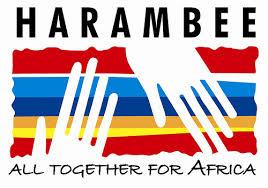 Harambee poziva ljude da doprinesu socijalnim inicijativama nastalim pod izravnim poticajem don Alvara