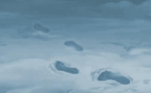 4. Stopinje v snegu