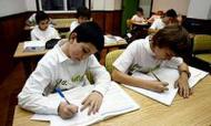 O Club Tambre de Pontevedra cambia horas de estudo pola plantación de árbores
